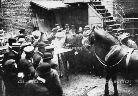 TOP-F-840139-0000 - Clever Hans, cavallo di proprietà di Wilhelm von Osten, ritenuto in grado di eseguire operazioni aritmetiche e altre attività intellettuali - Data dello scatto: 1904 - TopFoto / Archivi Alinari