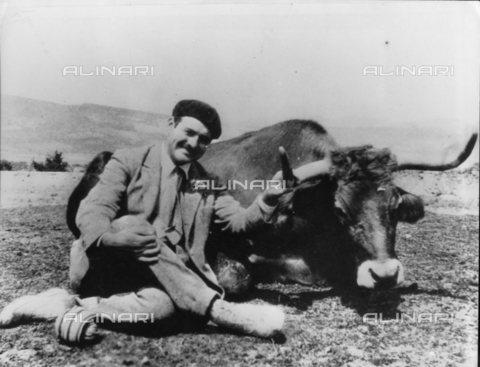 TOP-S-000102-2422 - Lo scrittore americano Ernest Hemingway (1899-1961) posa accanto a un toro in Messico - Data dello scatto: 06/1938 - TopFoto / Archivi Alinari