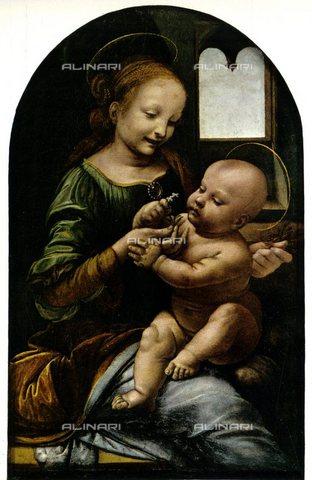 TOP-S-000130-5086 - Madonna Benois, detta Madonna del Fiore, olio su tela, Leonardo da Vinci (1452-1519), Museo dell'Ermitage, San Pietroburgo - TopFoto / Archivi Alinari