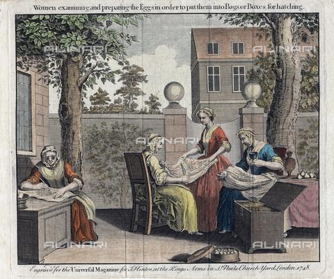 """UIG-F-033619-0000 - Operaie che esaminano le uova delle falene per la preparazione della seta, immagine tratta da """"he Universal Magazine"""" (1748) - UIG/Archivi Alinari"""