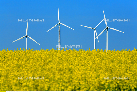 ULL-F-907103-0000 - Energia alternativa - Impianto di energia eolica a ruote - Data dello scatto: aprile 2007 - Korth/CARO / Ullstein Bild / Archivi Alinari
