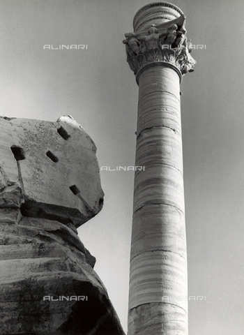 VAA-F-001678-0000 - Terminal column of the Via Appia, Brindisi - Date of photography: 1955-1960 - Fratelli Alinari Museum Collections-Villani Archive, Florence