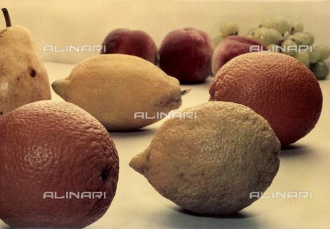 VAA-F-004411-0000 - Composizione di frutta - Data dello scatto: 1960 ca. - Archivi Alinari, Firenze