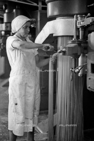 VBA-S-000459-0034 - Pasta factory Bertagni, Bologna, shop operation of the pasta