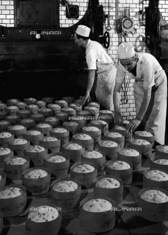 "VBA-S-002172-0169 - ""Panettones"" before being put in the oven at the Motta factory in Milan"