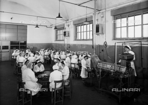VBA-S-002175-0326 - A department used for the preparation of candied fruit at the Motta Factory in Lissone, Milan, Brianza