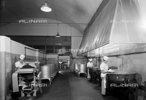 VBA-S-002175-0331 - The department used for preparing candied fruit at the Motta factory at Lissone, Milan, Brianza