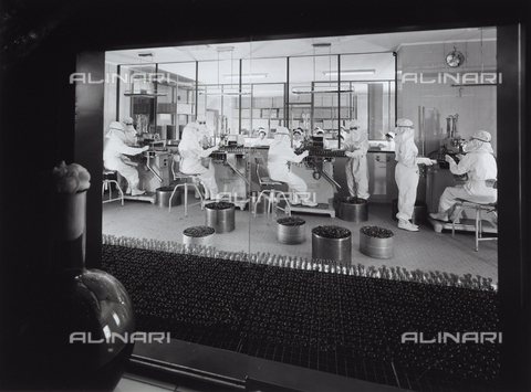 VBA-S-004633-0115 - Workers in the process of sterilization at the Alfa pharmaceutical factory. The photograph is taken through a window in an adjacent room. A bottle is visible there.