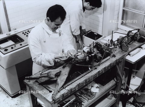 VBA-S-005306-0019 - Research activities and medico-pharmaceutical experiments taking place in the SIMES laboratory. The vivisection of a dog is visible.