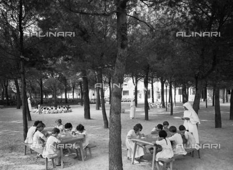 VBA-S-005316-0006 - Camp d'été pour les enfants des employés de l'usine de papier Burgo: children study and play in the woods