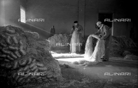 VBA-S-010822-0011 - Inside a factory, a few workers arrange the raw hemp fibers in bunches