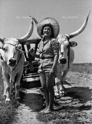 VBA-S-053001-0124 - Full-lenght portrait of a young peasant girl. She ispPosing in front of a pair of oxen