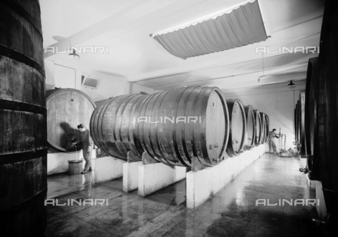 VBA-S-A04329-0004 - Barrels of the Distillery Fabbri plant, Bologna