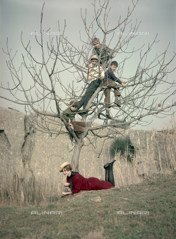 VBA-S-M00R19-0017 - Boys climbing a tree and model posing during a photo shoot - Date of photography: 1955-1960 ca. - Alinari Archives-Villani Archive, Florence