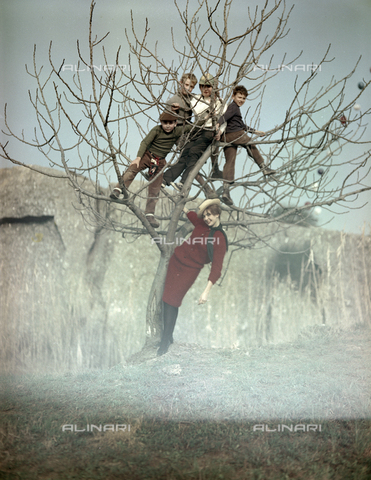 VBA-S-M00R19-0026 - Boys climbing a tree and a model posing during a photo shoot - Date of photography: 1955-1960 ca. - Alinari Archives-Villani Archive, Florence