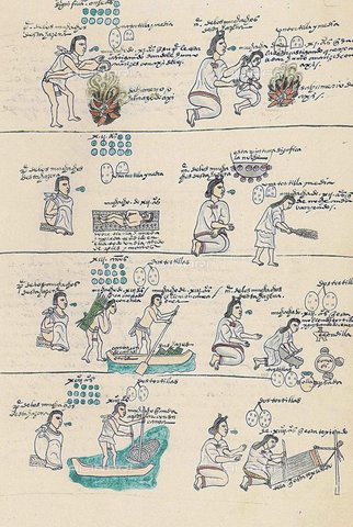 WHA-S-WHA052-0631 - Scenes of daily life of the Aztecs, illustration of the Mendoza Code, Aztec art of 1553 - World History Archive/Alinari Archives