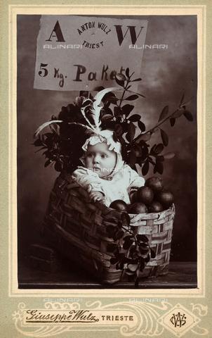 WSA-F-001903-0000 - Wanda Wulz bambina è stata ritratta dentro una cesta con frutta e rami - Data dello scatto: 1904 ca. - Archivi Alinari, Firenze