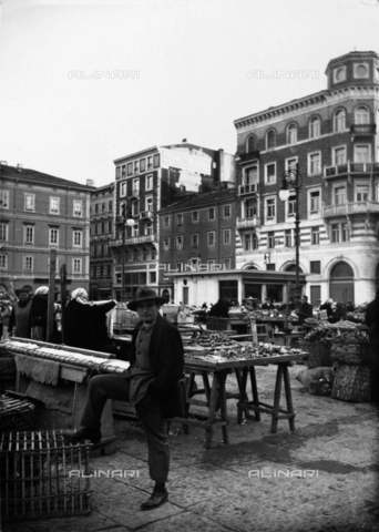 WWA-F-006773-0000 - Fruit and vegetable stands at the market in Piazza Ponterosso, Trieste