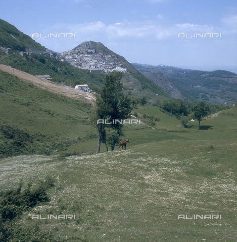 ZCA-S-000090-0010 - Paesaggio lucano - Data dello scatto: 1970 ca. - Archivi Alinari-archivio Zannier, Firenze