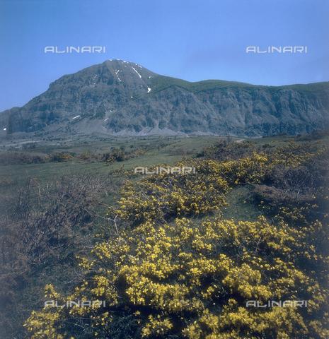 ZCA-S-000090-0107 - Paesaggio lucano - Data dello scatto: 1970 ca. - Archivi Alinari-archivio Zannier, Firenze
