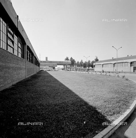 ZIA-S-210300-0036 - Stabilimento per la vendita di elettrodomestici Rex, Pordenone - Data dello scatto: 10/1962 - Raccolte Museali Fratelli Alinari (RMFA)-archivio Zannier, Firenze