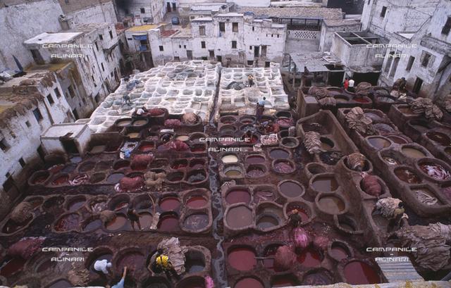 Fes ART 169 Citta vecchia, tintori nella vecchia Medina