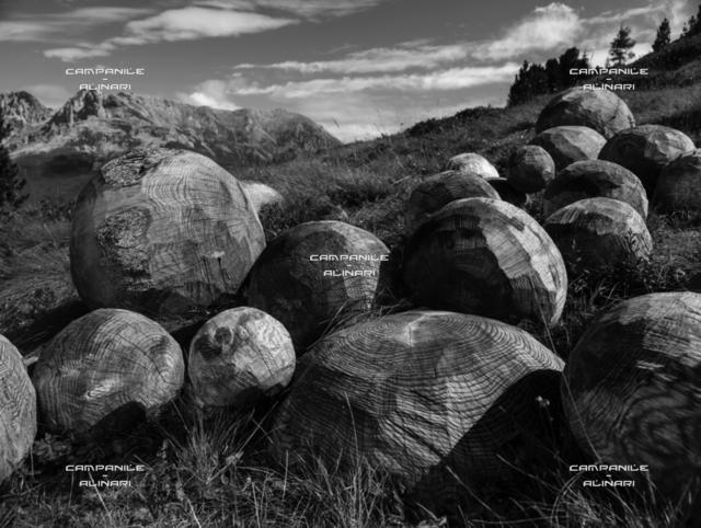 """Val di Fiemme 16651, Pampeago, Parco d'Arte RespirArt, """"Una valanga di bolle di pensieri"""" (2012) opera di Thorsten Schutt"""