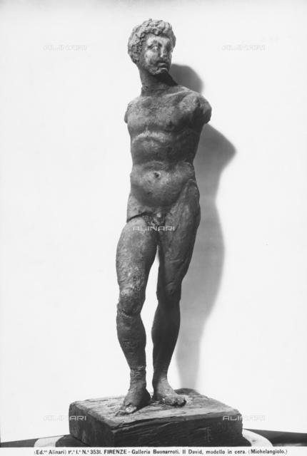 Wax David, Casa Buonarroti, Florence