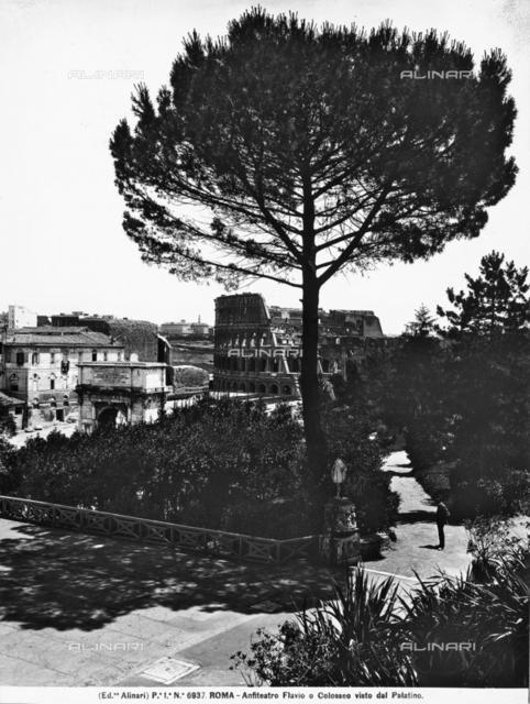 The Colosseum photographed from the Palatine Hill in Rome