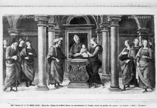 Presentation of the Virgin in the Temple, predella, the altar-cloth, Church of Santa Maria Nuova, Fano