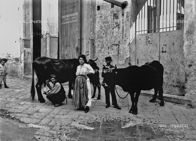 Itinerant milkman in Naples