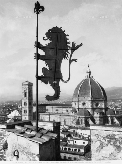 The symbol of the Marzocco on the Volognana Tower of the Palazzo del Bargello, Florence