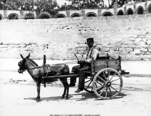 Young man sitting on a traditional cart pulled by a small donkey.
