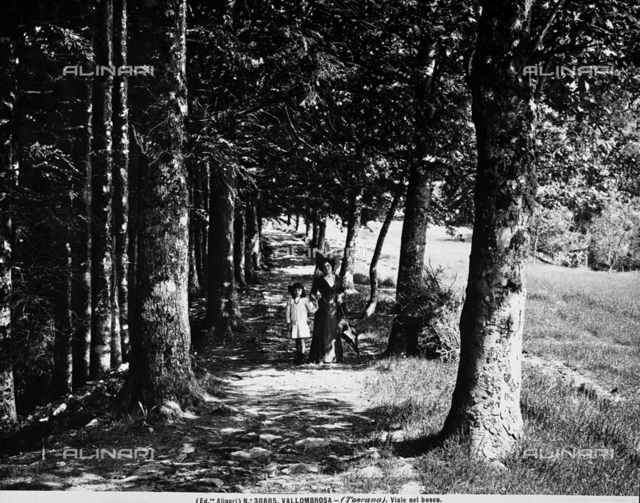 A woman and a little girl walking along a path in the woods of Vallombrosa