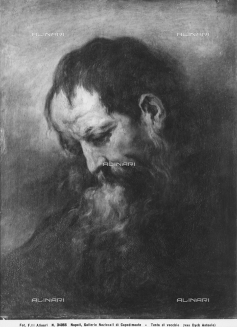 Portrait of an old man, National Gallery of Capodimonte, Naples