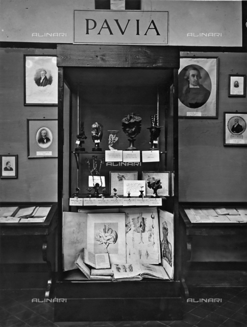 Glass case with anatomic samples and some works of the surgeon Antonio Scarpa, preserved in the University of Pavia. The photo was taken on the occasion of the Exhibition on the History of Science held in Florence in 1929.