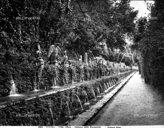 The 100 Fountains, park of the Villa d'Este, Tivoli