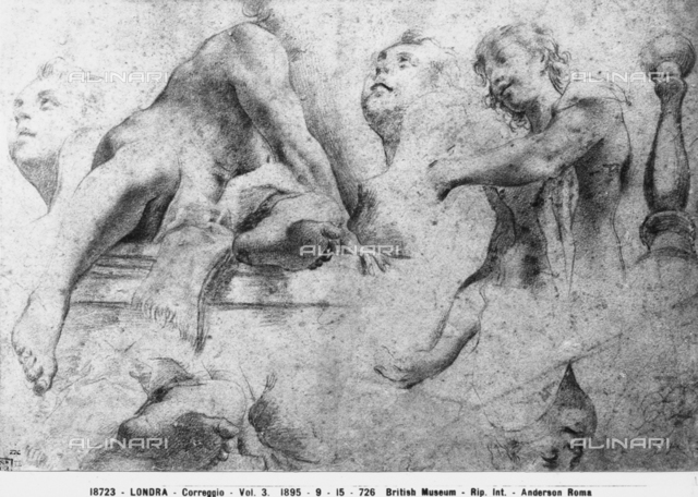 Study of parts of male bodies, drawing by Correggio, British Museum, London