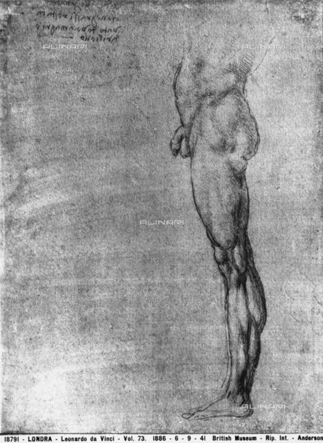 Study of a male leg, British Museum, London