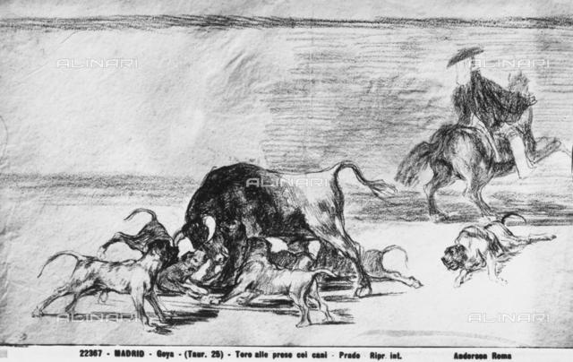 """They loose dogs on the bull,"" Prado Museum, Madrid"