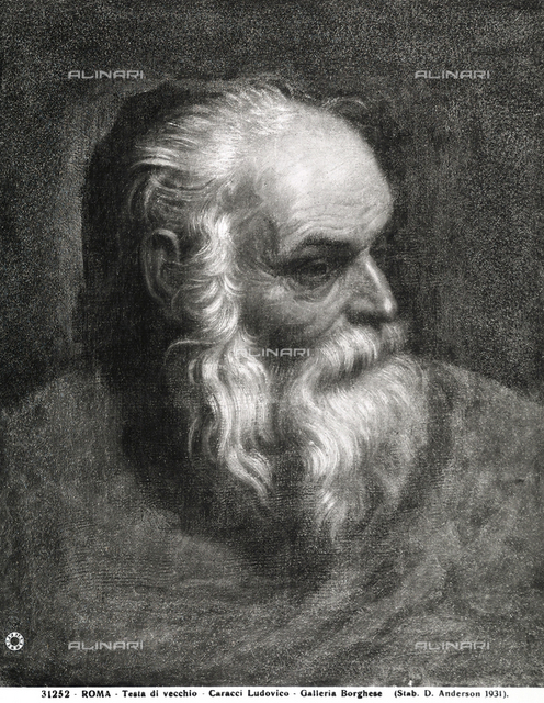 Head of an Old Man, Borghese Gallery, Rome