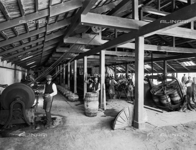 Interior of part of the Ingham Distillery of Marsala wine. Surrounded by barrels and equipment, some of the workers are posing for the photographer