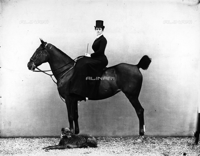Portrait of Mrs. Flori on horseback. A greyhound is in the foreground.