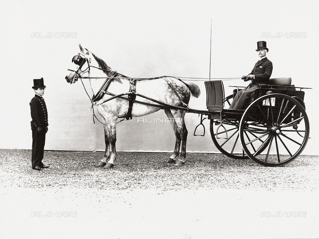 Gentleman sitting in a gig; near the horse, a young servant in his work uniform