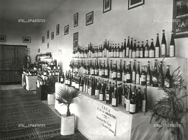 Second Sample Trade Fair of Tripoli, June 1928: pavilion of the C.N.F.A. (Consortium of Typical Wines from Castelli Romani)