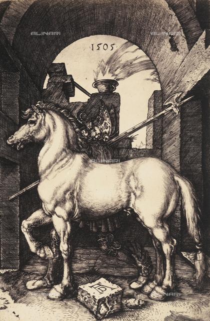 The Little Horse by Albrecht Durer