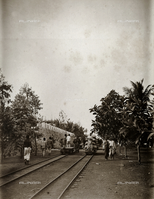 Workers carrying cocoa to port, when it will be loaded on merchant ships at Agua-izè, locality of the island of Sao Tomè, west side of Africa