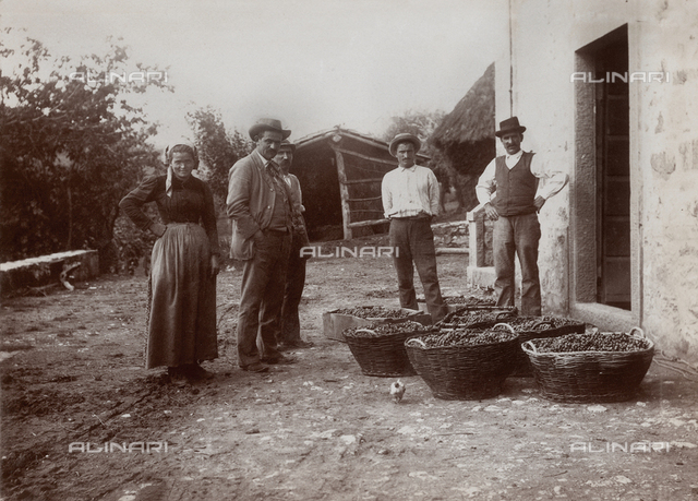 Country family in Massa