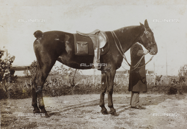 An officer with a horse