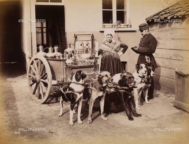 A beverage vendor in front of her little cart pulled by six dogs